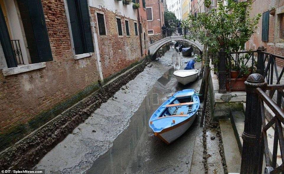 Каналите на Венеция пресъхват втори път за три години 1